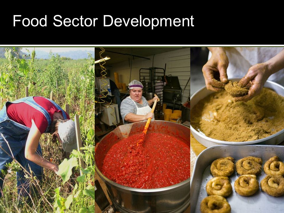 At the crossroads of local food economies EnvironmentalSustainability Food Security for All New Economic Opportunities