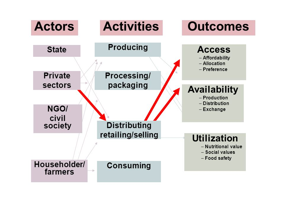State Activities Consuming Availability – Production – Distribution – Exchange Access – Affordability – Allocation – Preference Utilization – Nutritio