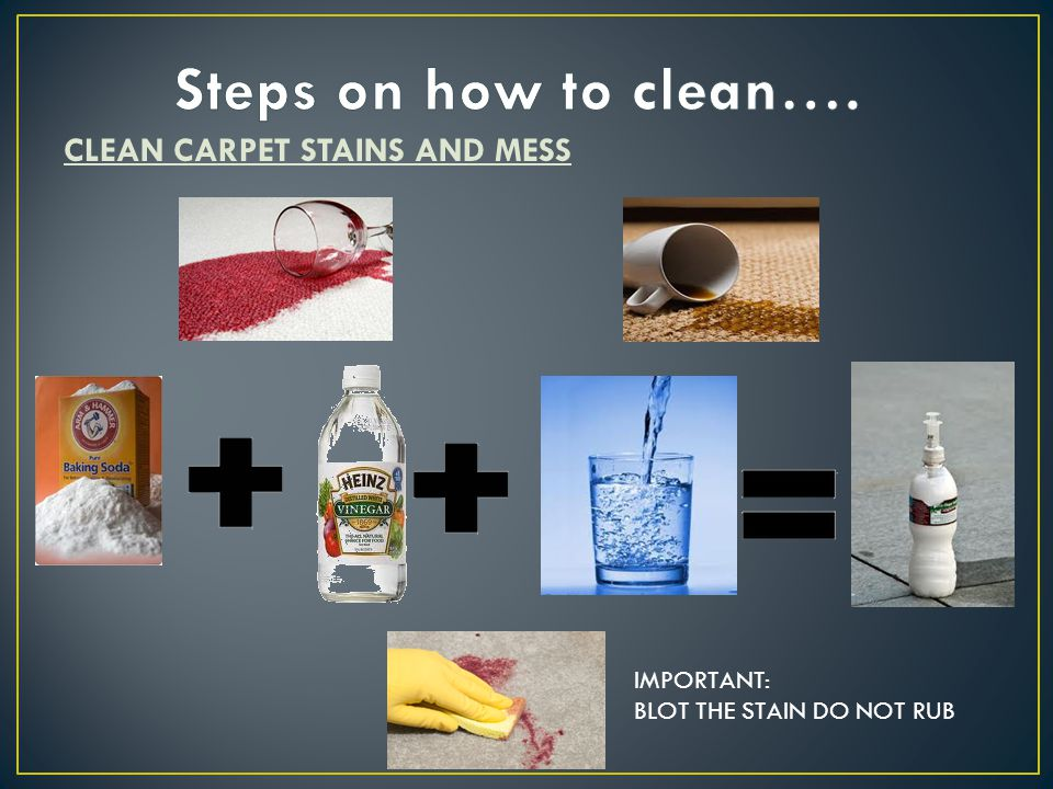 CLEAN CARPET STAINS AND MESS IMPORTANT: BLOT THE STAIN DO NOT RUB