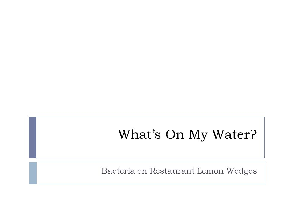 Whats On My Water? Bacteria on Restaurant Lemon Wedges