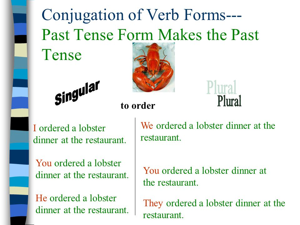 Conjugation of Verb Forms--- Past Tense Form Makes the Past Tense I ordered a lobster dinner at the restaurant. You ordered a lobster dinner at the re