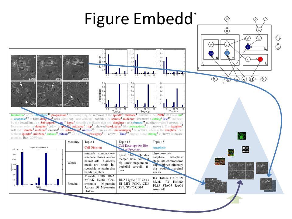 Figure Embedding