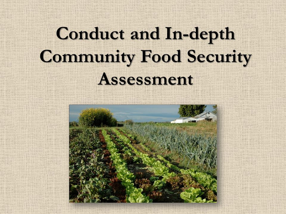 Conduct and In-depth Community Food Security Assessment