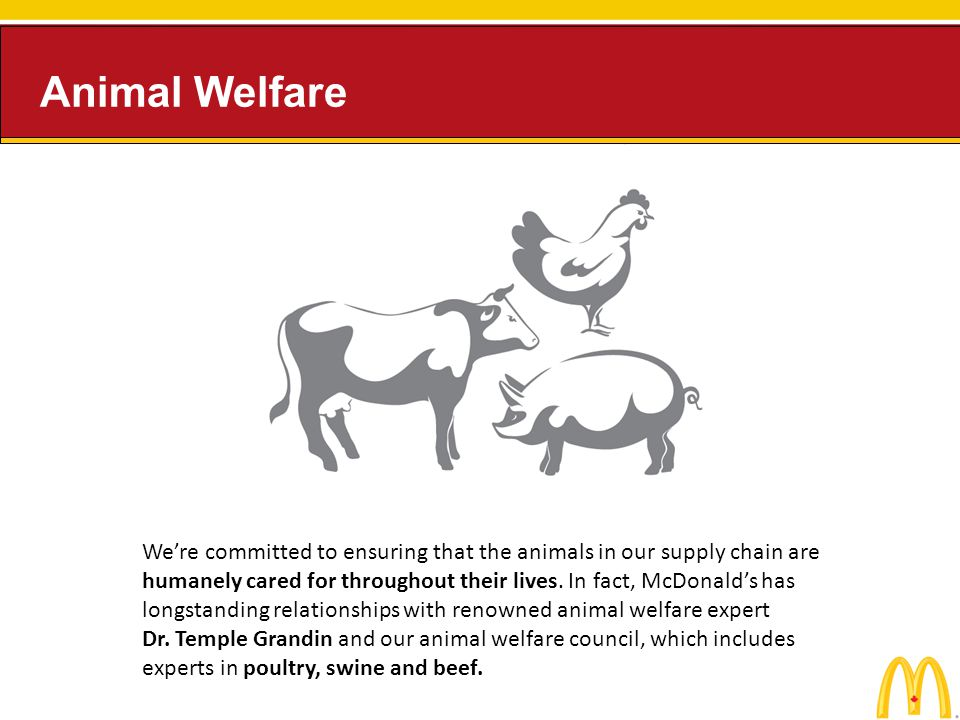 Were committed to ensuring that the animals in our supply chain are humanely cared for throughout their lives. In fact, McDonalds has longstanding rel