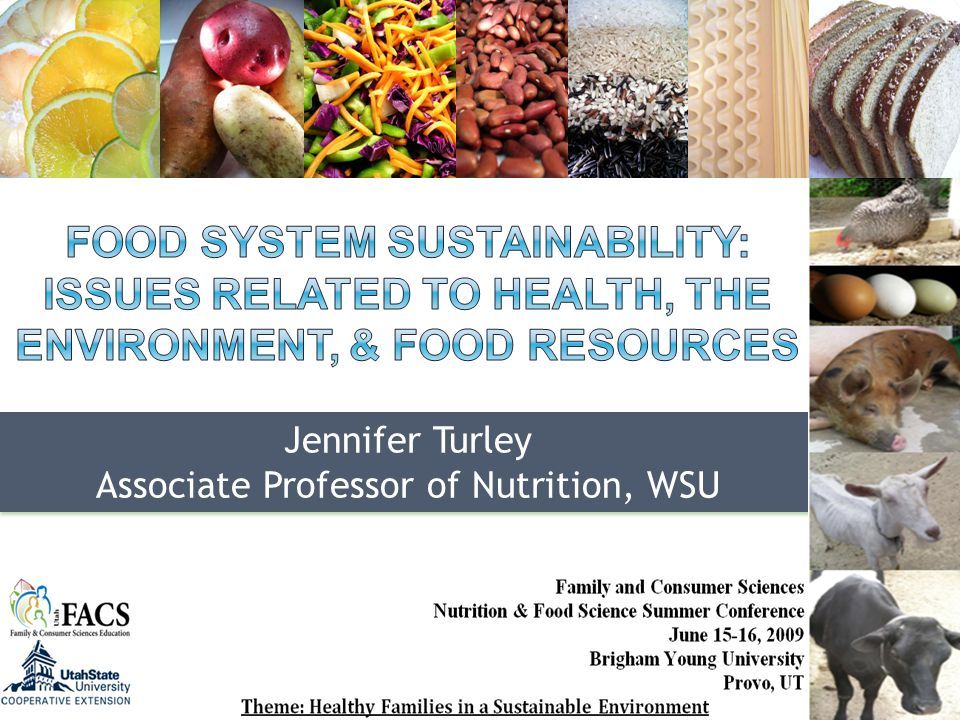 What is a food system?What is a sustainable food system?How does this apply to plant & animal foods.