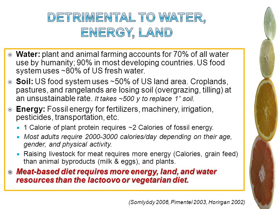 (Somlyódy 2006, Pimentel 2003, Horirgan 2002) Water: plant and animal farming accounts for 70% of all water use by humanity; 90% in most developing countries.