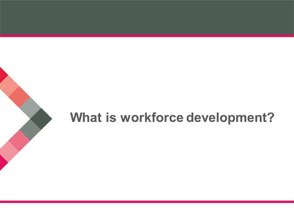 What is workforce development