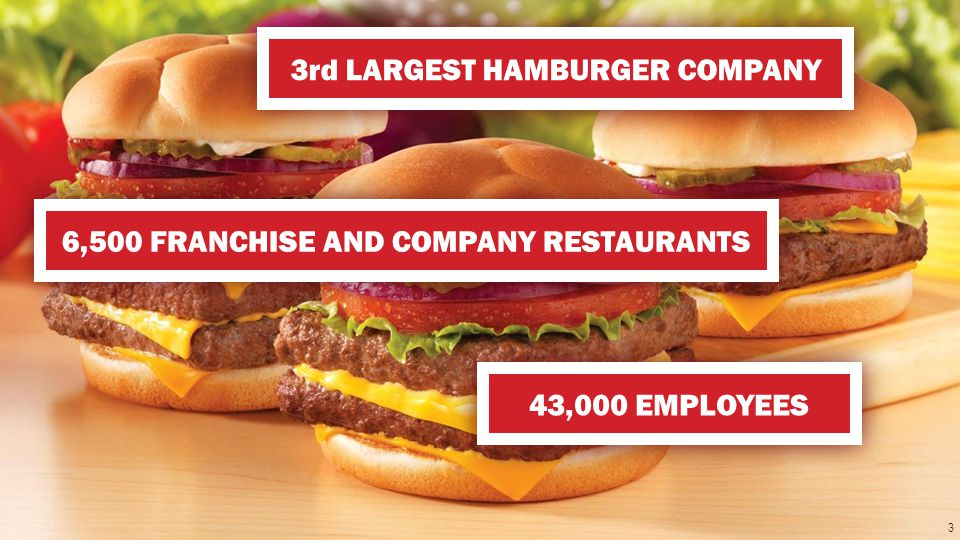 The Wendys Company 3rd LARGEST HAMBURGER COMPANY 6,500 FRANCHISE AND COMPANY RESTAURANTS 43,000 EMPLOYEES 3