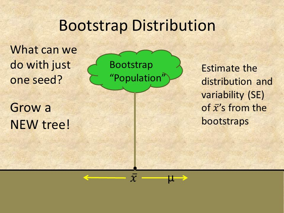 Bootstrap Distribution Bootstrap Population What can we do with just one seed? Grow a NEW tree! µ