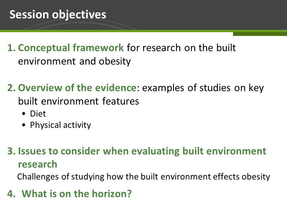 Section 1. Conceptual framework