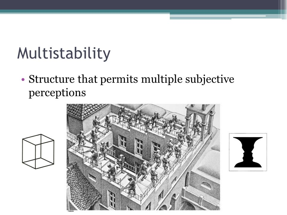 Multistability Structure that permits multiple subjective perceptions