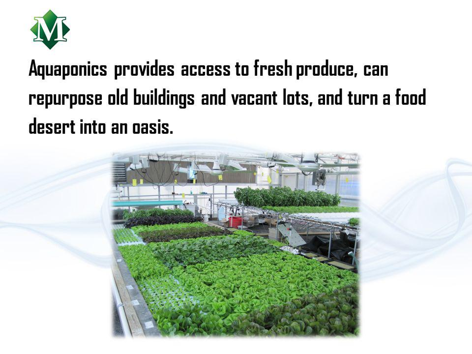 Aquaponics provides access to fresh produce, can repurpose old buildings and vacant lots, and turn a food desert into an oasis.