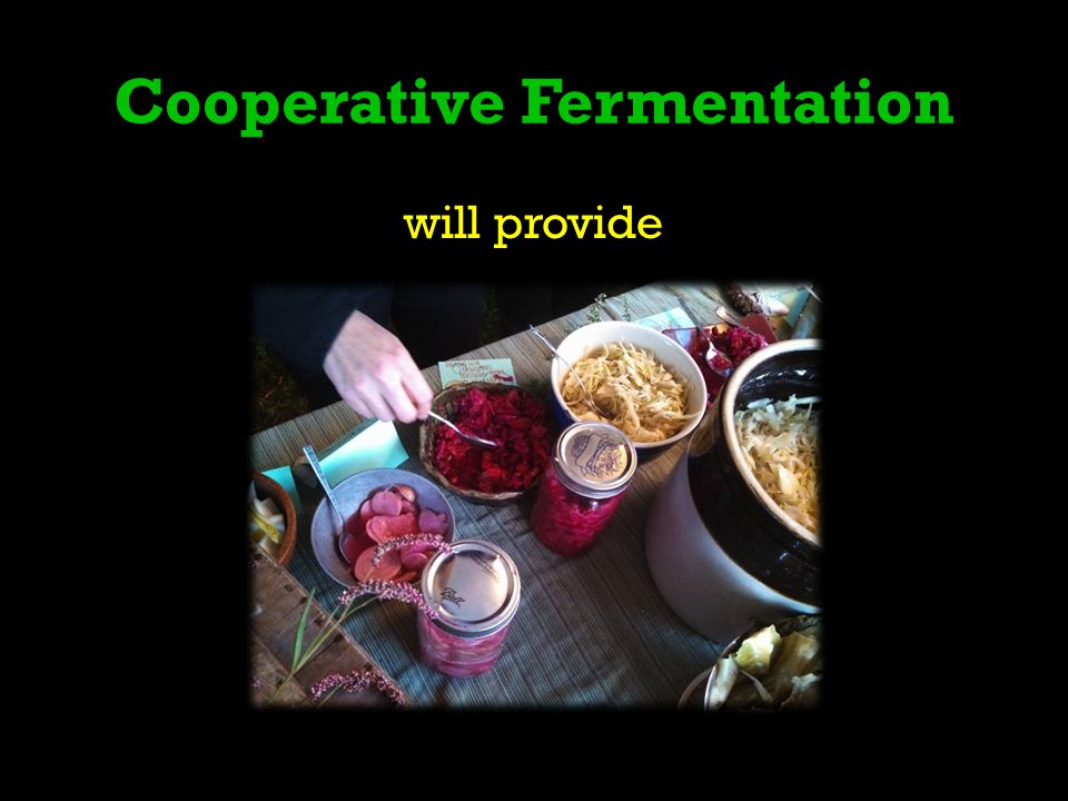 Cooperative Fermentation will provide