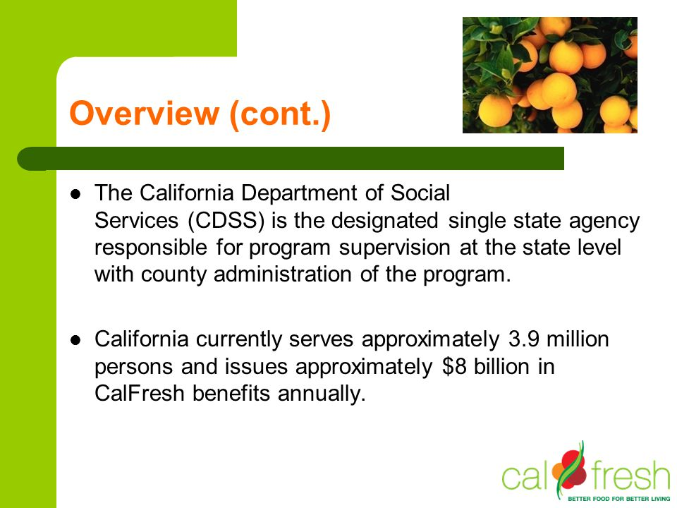 Overview (cont.) The California Department of Social Services (CDSS) is the designated single state agency responsible for program supervision at the