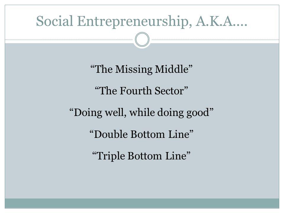 Social Entrepreneurship, A.K.A....