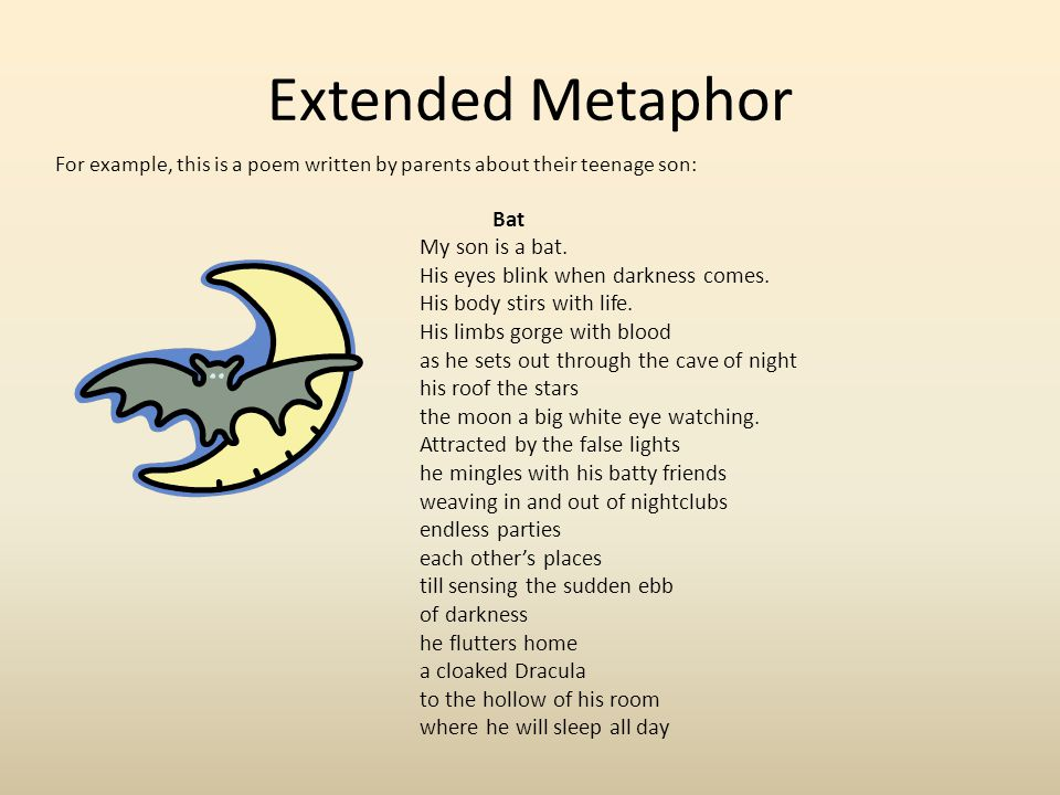 Extended Metaphor Why did the parents decide to compare the way the son lives his life to the way a bat lives?