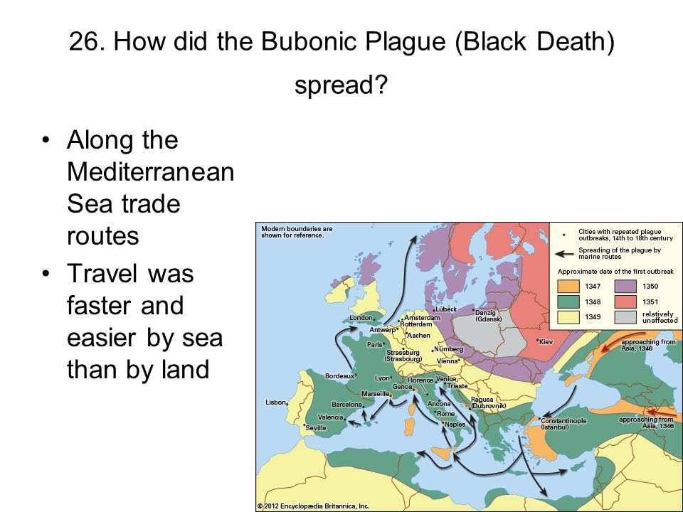 26. How did the Bubonic Plague (Black Death) spread? Along the Mediterranean Sea trade routes Travel was faster and easier by sea than by land