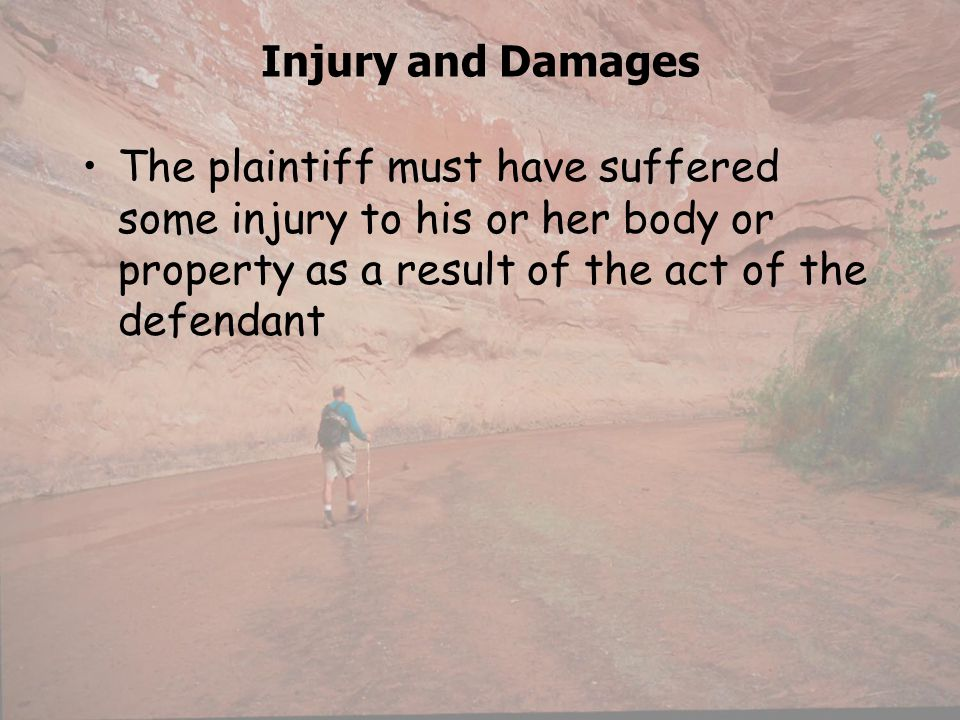 Injury and Damages The plaintiff must have suffered some injury to his or her body or property as a result of the act of the defendant