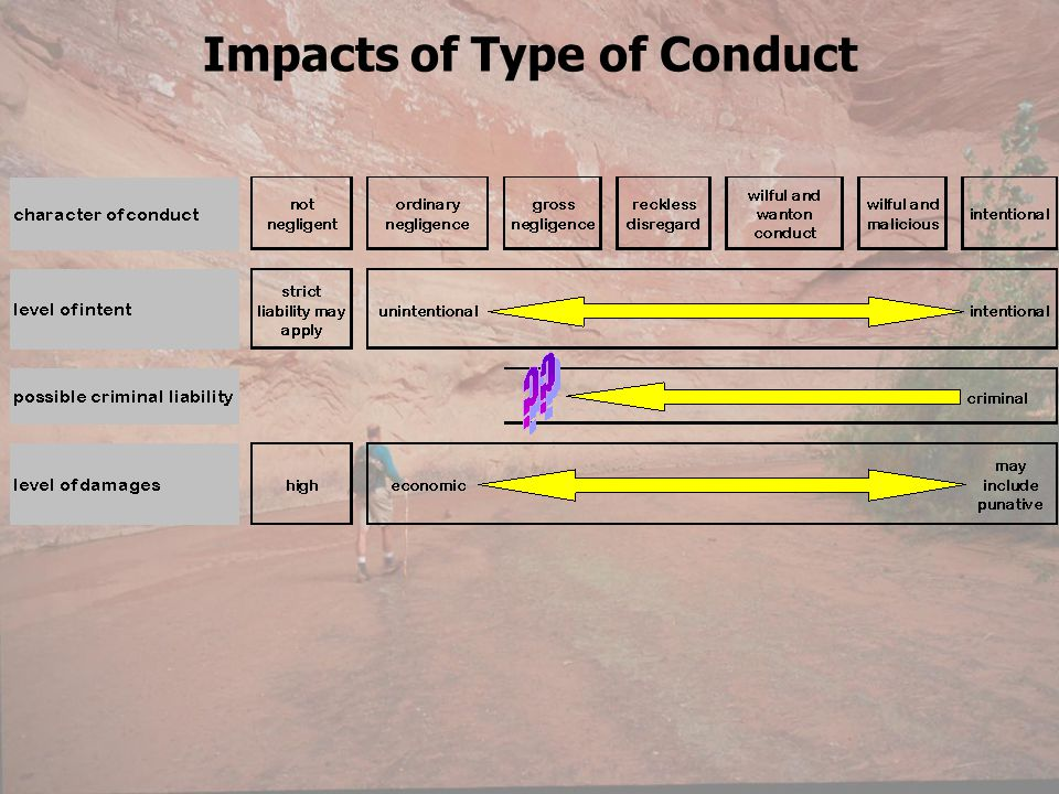 Impacts of Type of Conduct