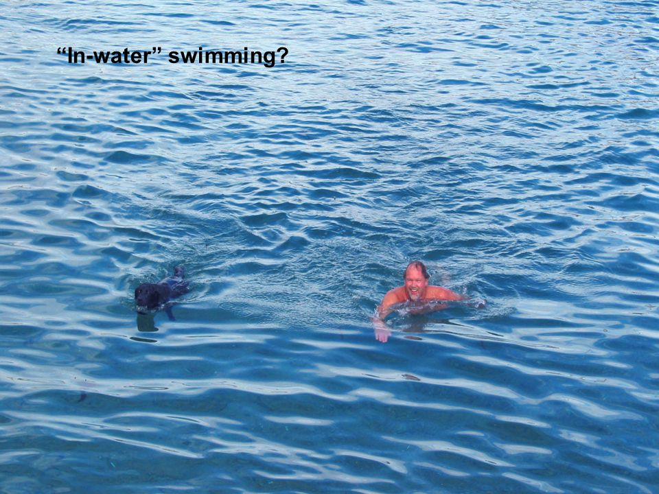 In-water swimming