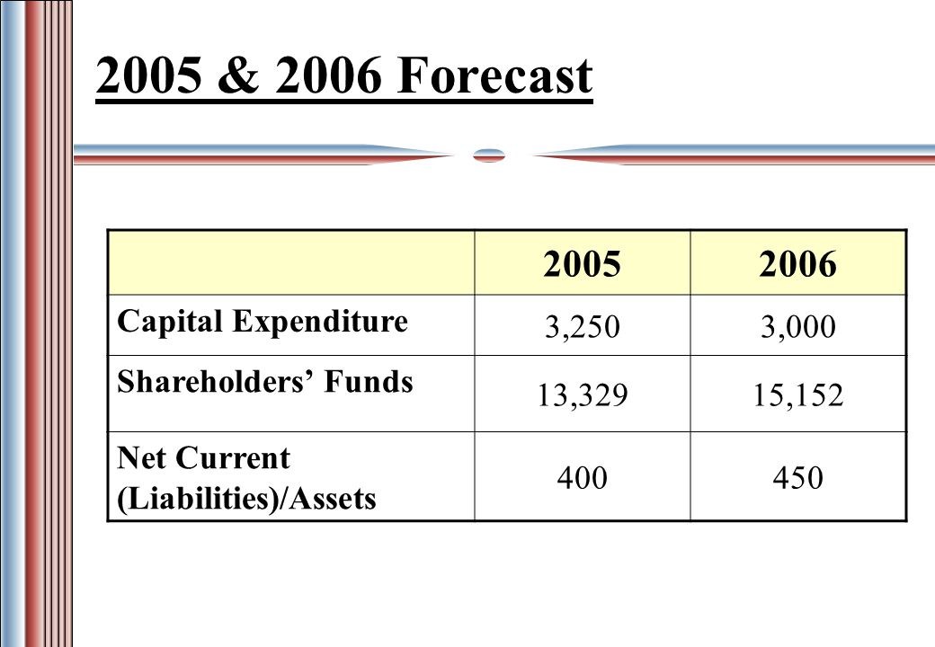 2005 & 2006 Forecast 20052006 Capital Expenditure 3,2503,000 Shareholders Funds 13,32915,152 Net Current (Liabilities)/Assets 400450