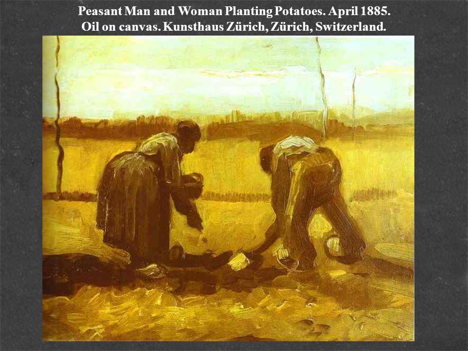 Peasant Man and Woman Planting Potatoes. April 1885. Oil on canvas. Kunsthaus Zürich, Zürich, Switzerland.