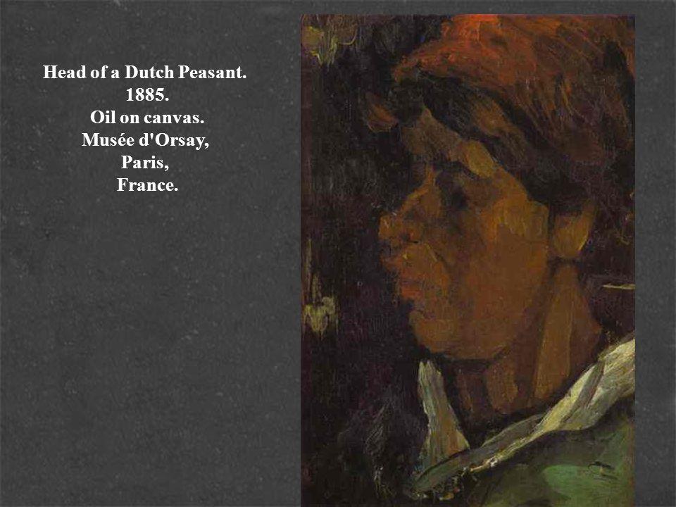 Head of a Dutch Peasant. 1885. Oil on canvas. Musée d'Orsay, Paris, France.