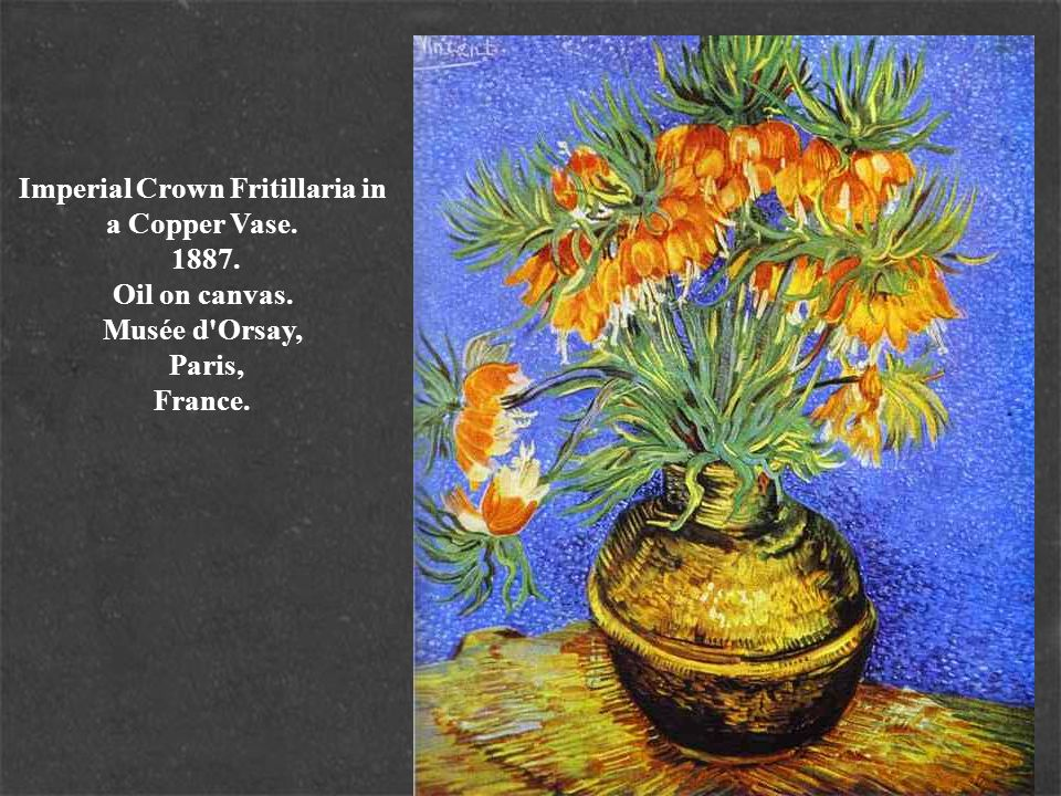 Imperial Crown Fritillaria in a Copper Vase. 1887. Oil on canvas. Musée d'Orsay, Paris, France.