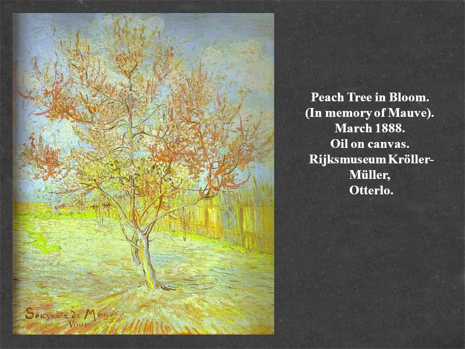 Peach Tree in Bloom. (In memory of Mauve). March 1888. Oil on canvas. Rijksmuseum Kröller- Müller, Otterlo.