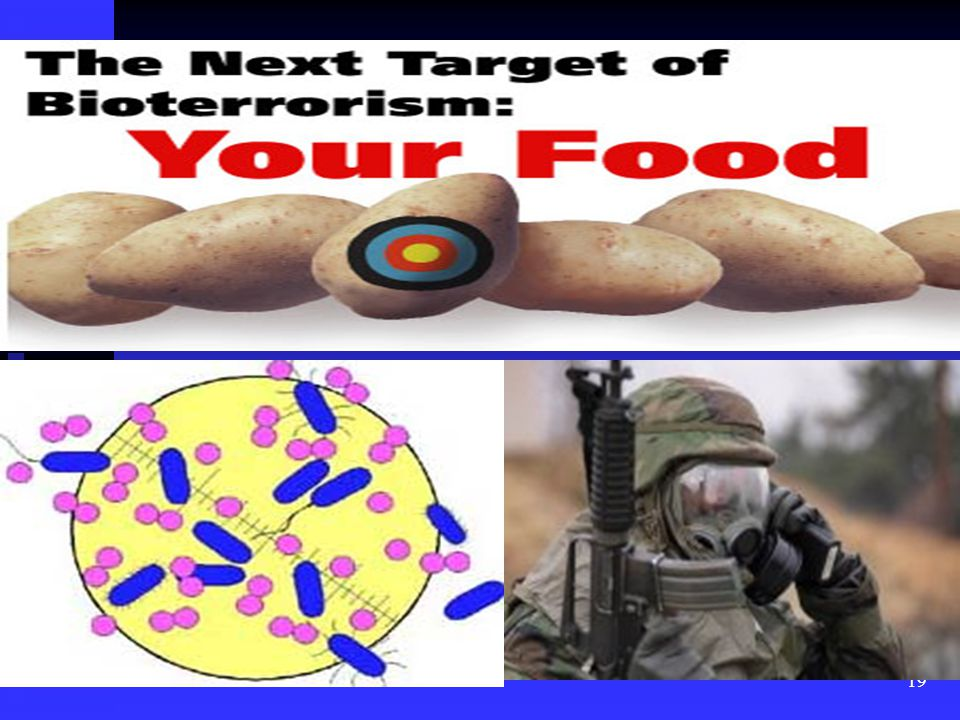 20 A Real Bioterrorist Attack What would happen if there was a real bioterrorist attack on our food supply?; What would happen if there was a real bioterrorist attack on our food supply?; 1)The export market would collapse.