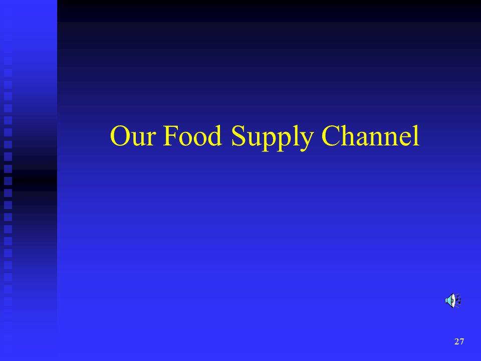 27 Our Food Supply Channel