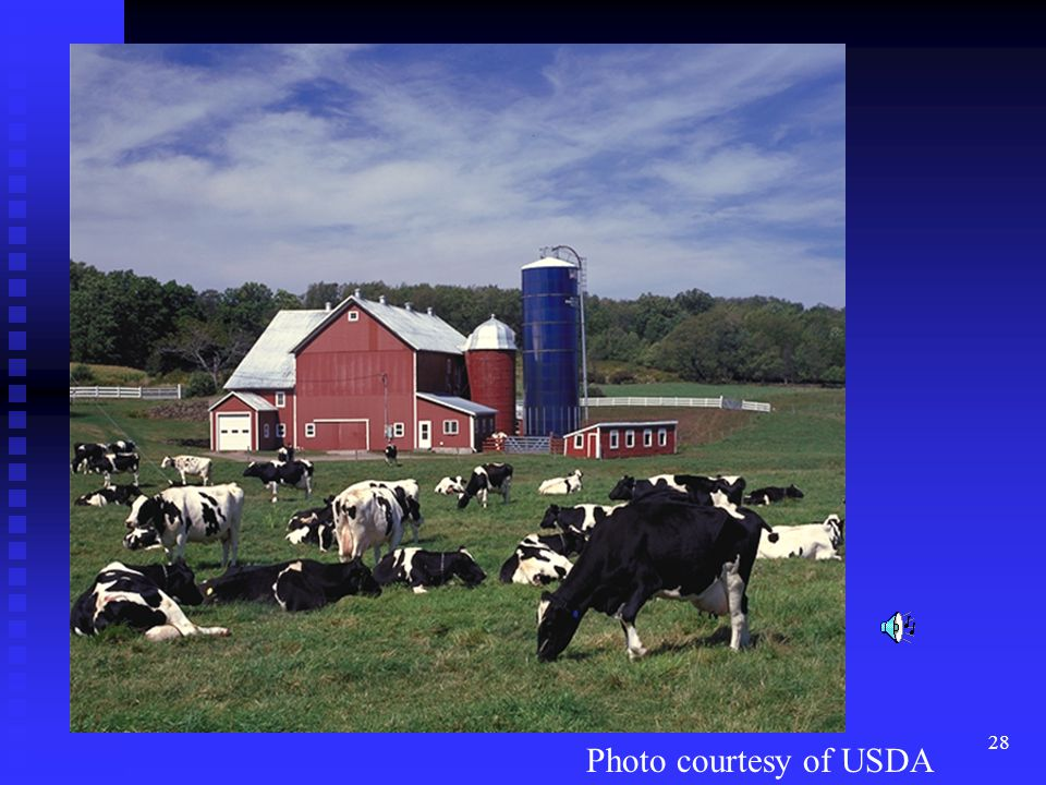 28 Photo courtesy of USDA