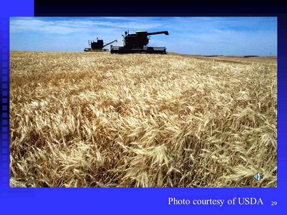 29 Photo courtesy of USDA