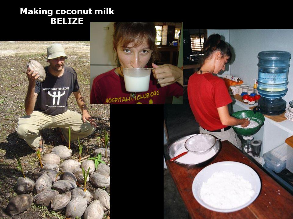 Making coconut milk BELIZE