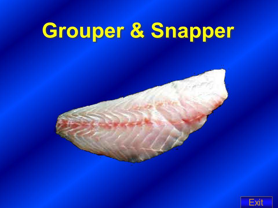 Grouper & Snapper Exit
