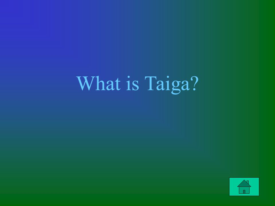 What is Taiga?