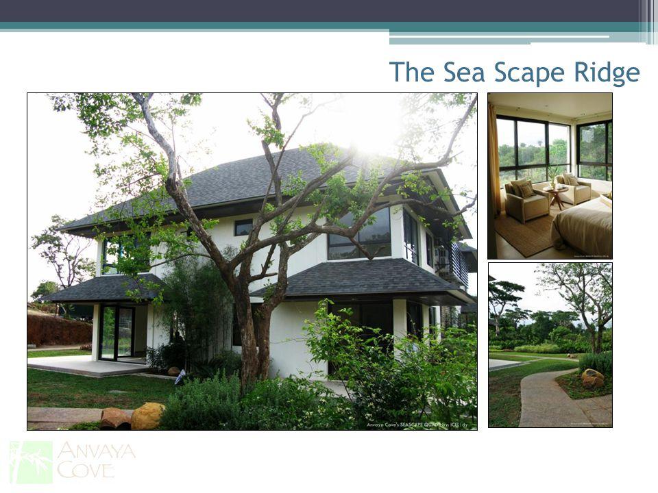 The Sea Scape Ridge