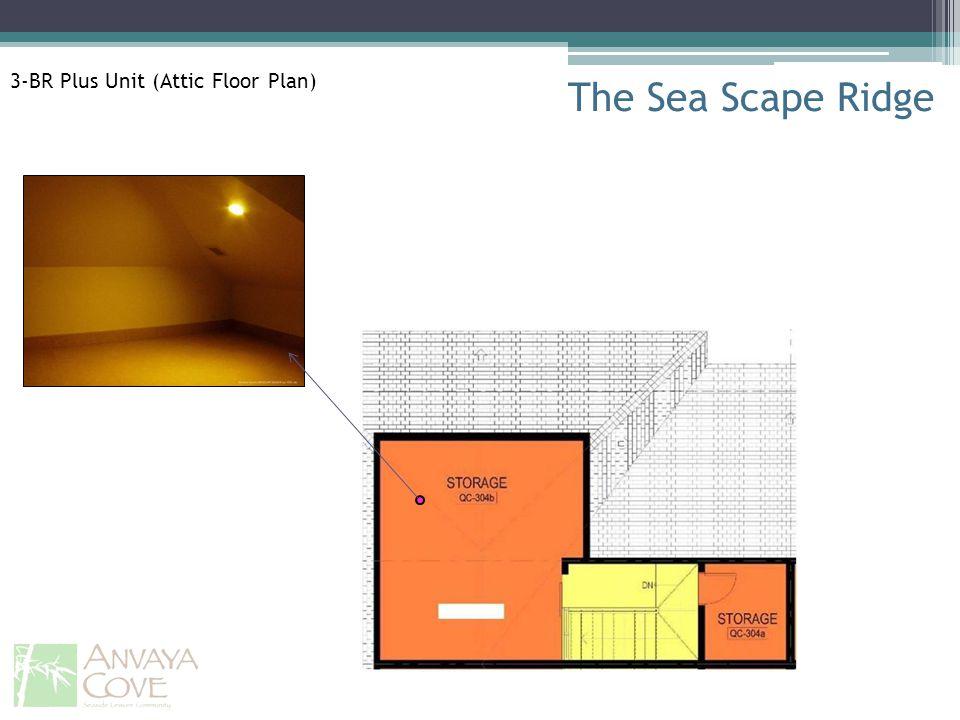 The Sea Scape Ridge 3-BR Plus Unit (Attic Floor Plan)