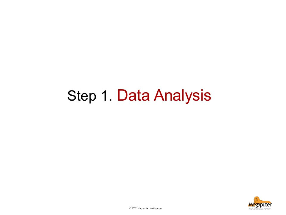 © 2007 Megaputer Intelligence Step 1. Data Analysis