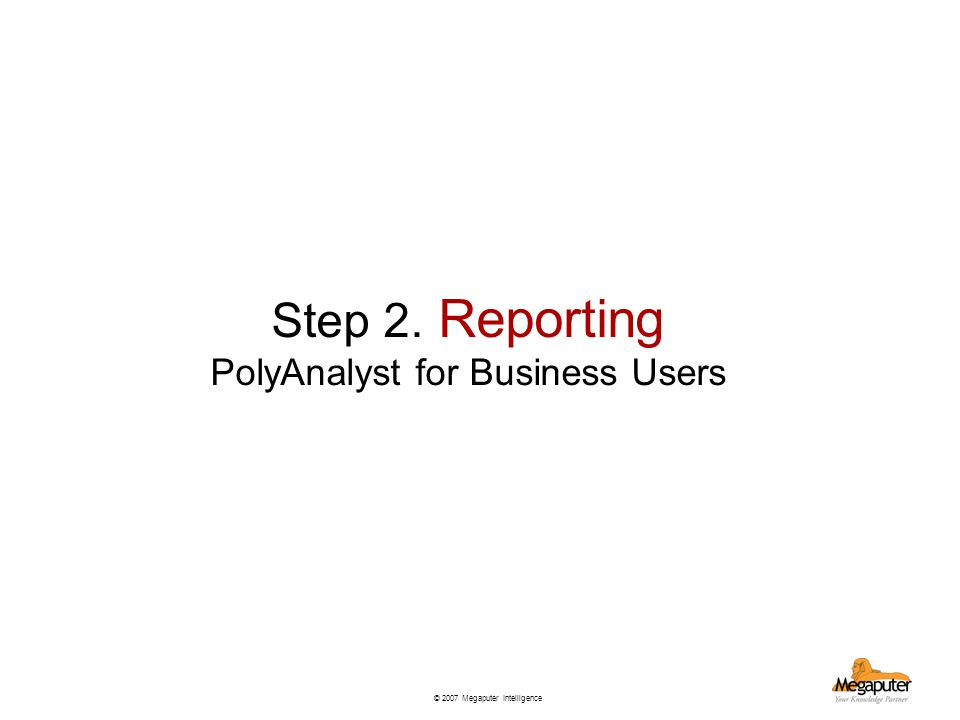 © 2007 Megaputer Intelligence Step 2. Reporting PolyAnalyst for Business Users
