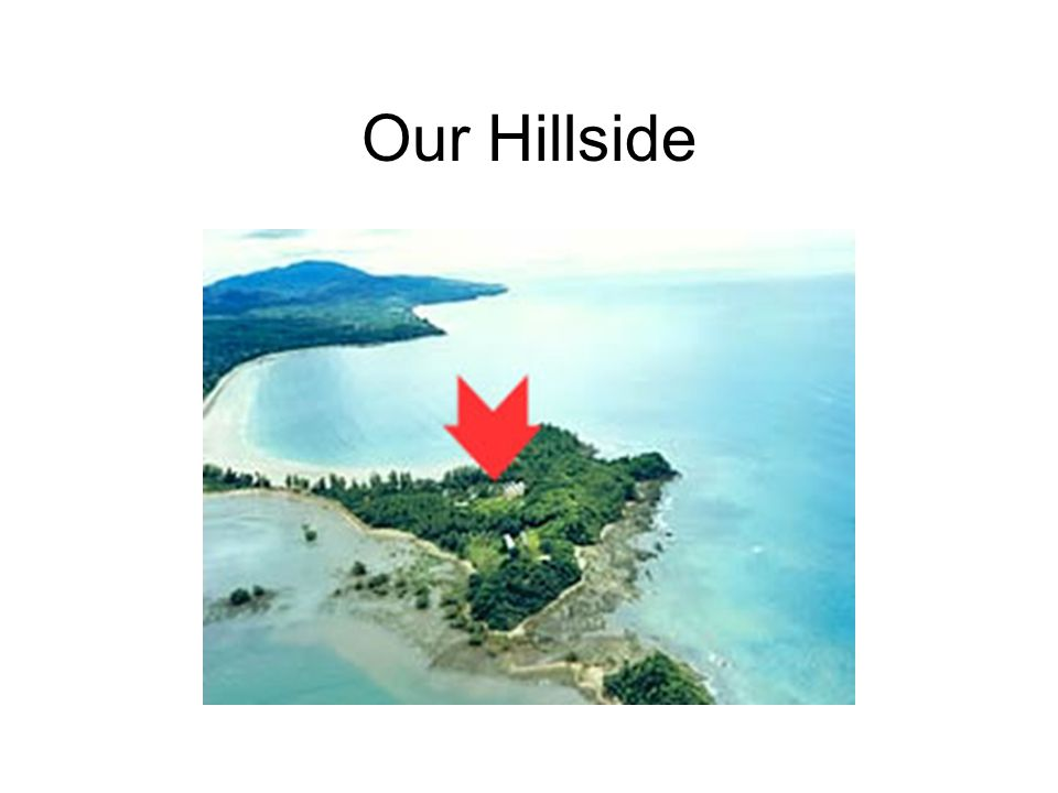 Our Hillside