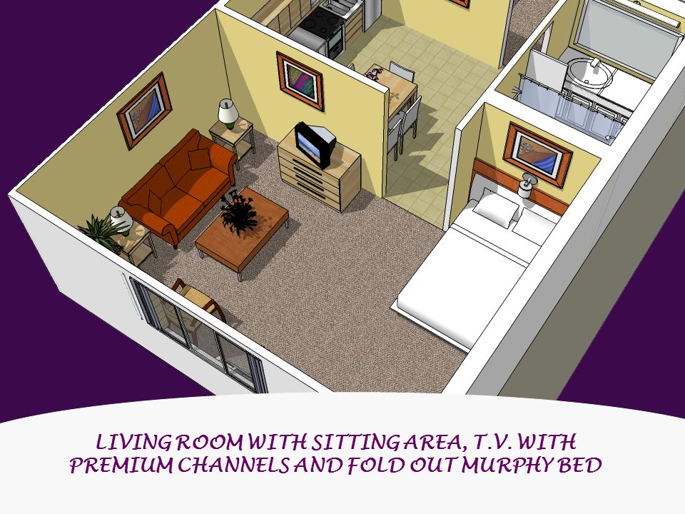 LIVING ROOM WITH SITTING AREA, T.V. WITH PREMIUM CHANNELS AND FOLD OUT MURPHY BED