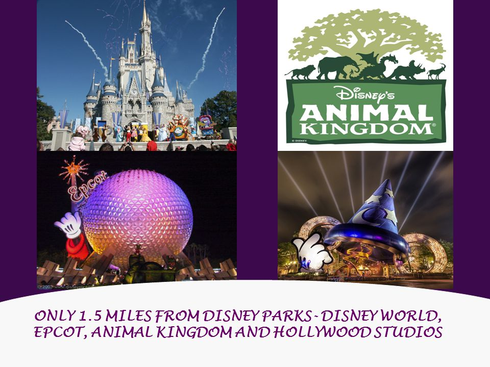 ONLY 1.5 MILES FROM DISNEY PARKS- DISNEY WORLD, EPCOT, ANIMAL KINGDOM AND HOLLYWOOD STUDIOS