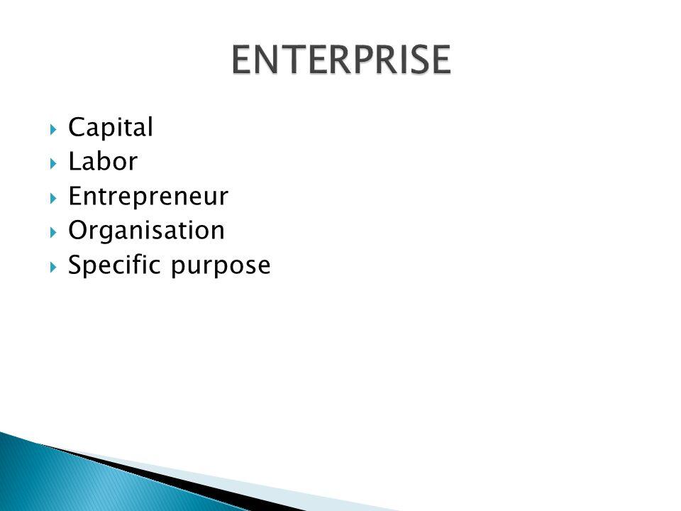 Capital Labor Entrepreneur Organisation Specific purpose