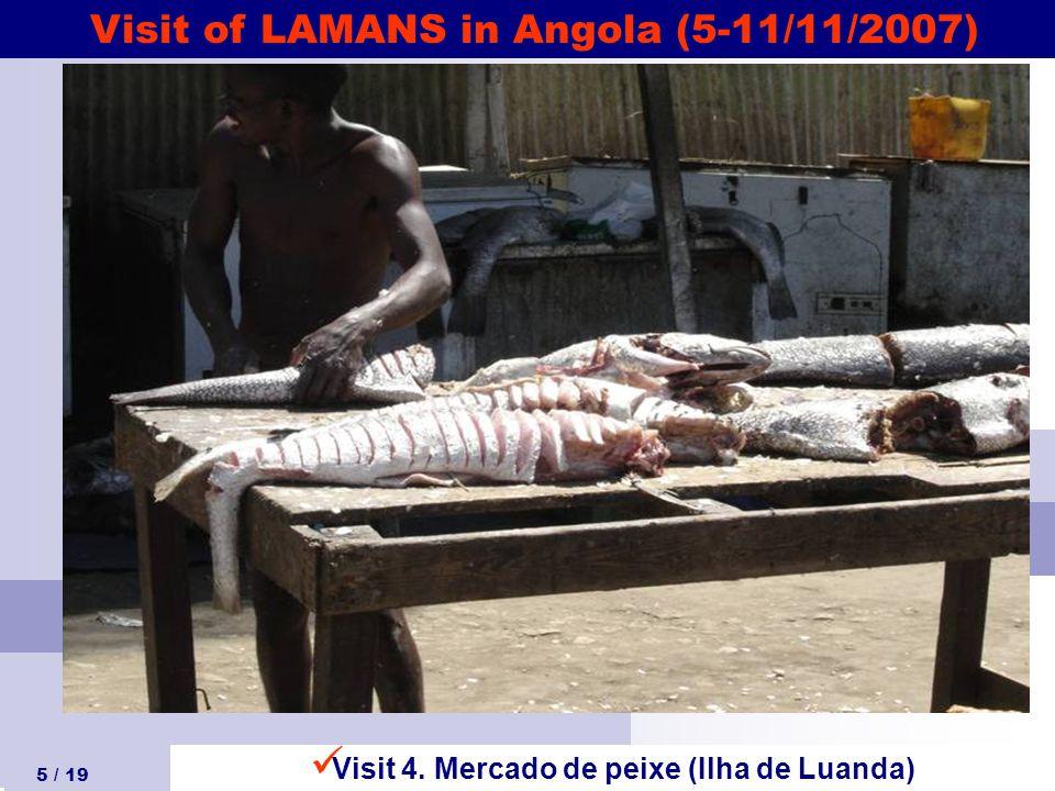 Visit of LAMANS in Angola (5-11/11/2007) 5 / 19 Visit 4. Mercado de peixe (Ilha de Luanda)