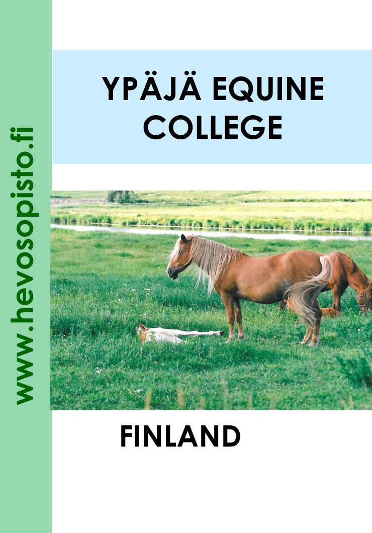 www.hevosopisto.fi 2 YPÄJÄ EQUINE COLLEGE the leading professional and further education centre in Finland specializing in horses the most well known training and competition centre in riding sports in Finland established in 1993 to continue and develop the operation of the Ypäjä Equine Management School and The Finnish Riding Institute the traditions of education and training reach from the 1930s owned by the state of Finland25 % three nearby municipalities Forssa, Jokioinen ja Ypäjä 25 % the Finnish Trotting and Breeding Association 25 % the Equestrian Federation of Finland25%