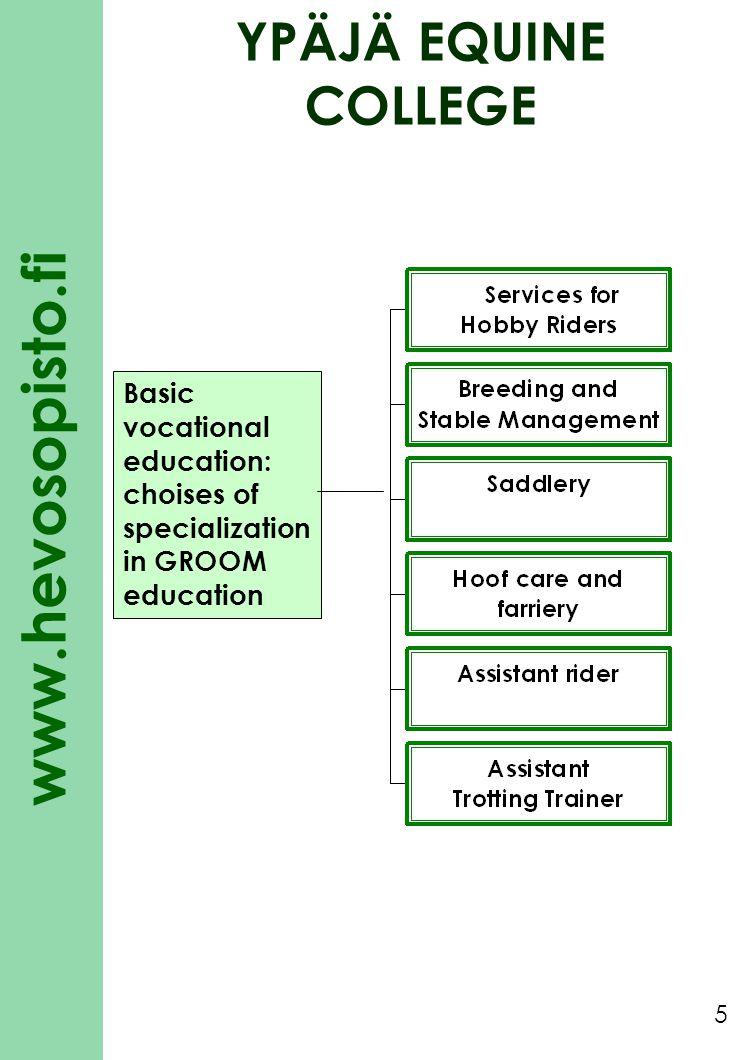 www.hevosopisto.fi 5 Basic vocational education: choises of specialization in GROOM education YPÄJÄ EQUINE COLLEGE