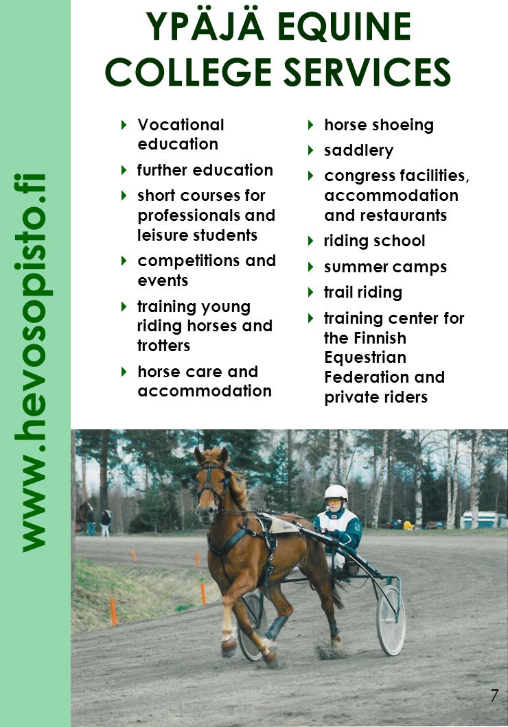 www.hevosopisto.fi YPÄJÄ EQUINE COLLEGE in co- operation with: EEN – Equestrian Educational Network IGEQ – International Group for Equestrian Qualifications 8
