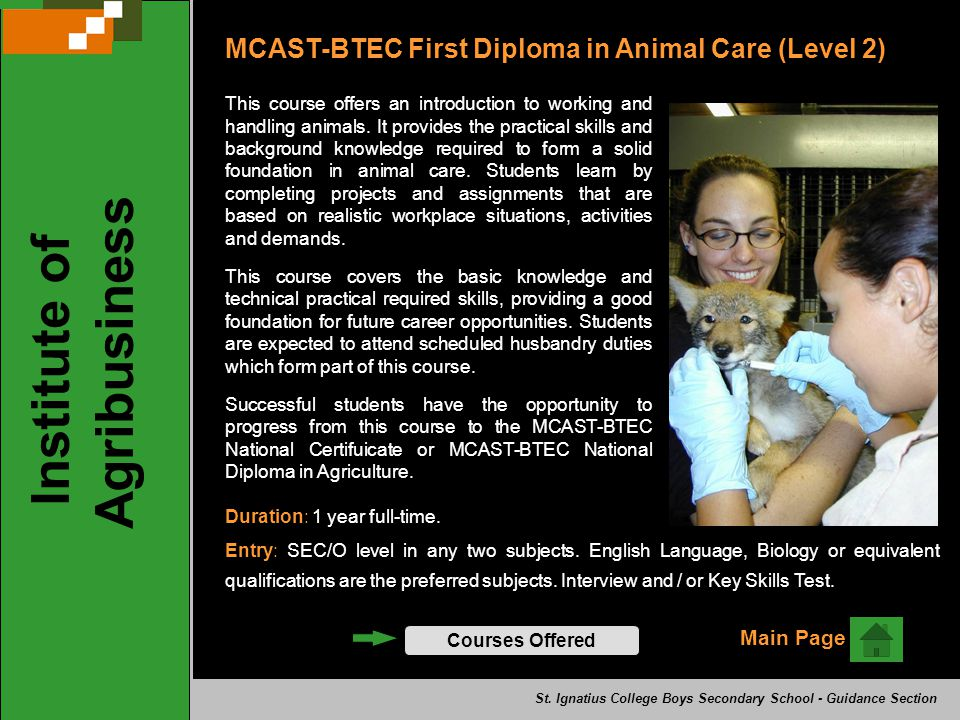 Institute of Agribusiness Courses Offered Main Page MCAST-BTEC First Diploma in Animal Care (Level 2) This course offers an introduction to working and handling animals.