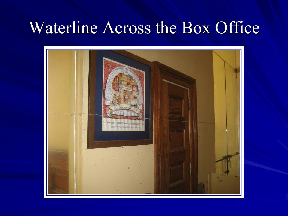 Waterline Across the Box Office